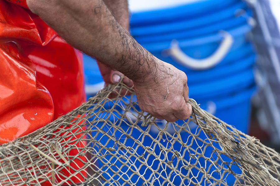 Il rito della pesca